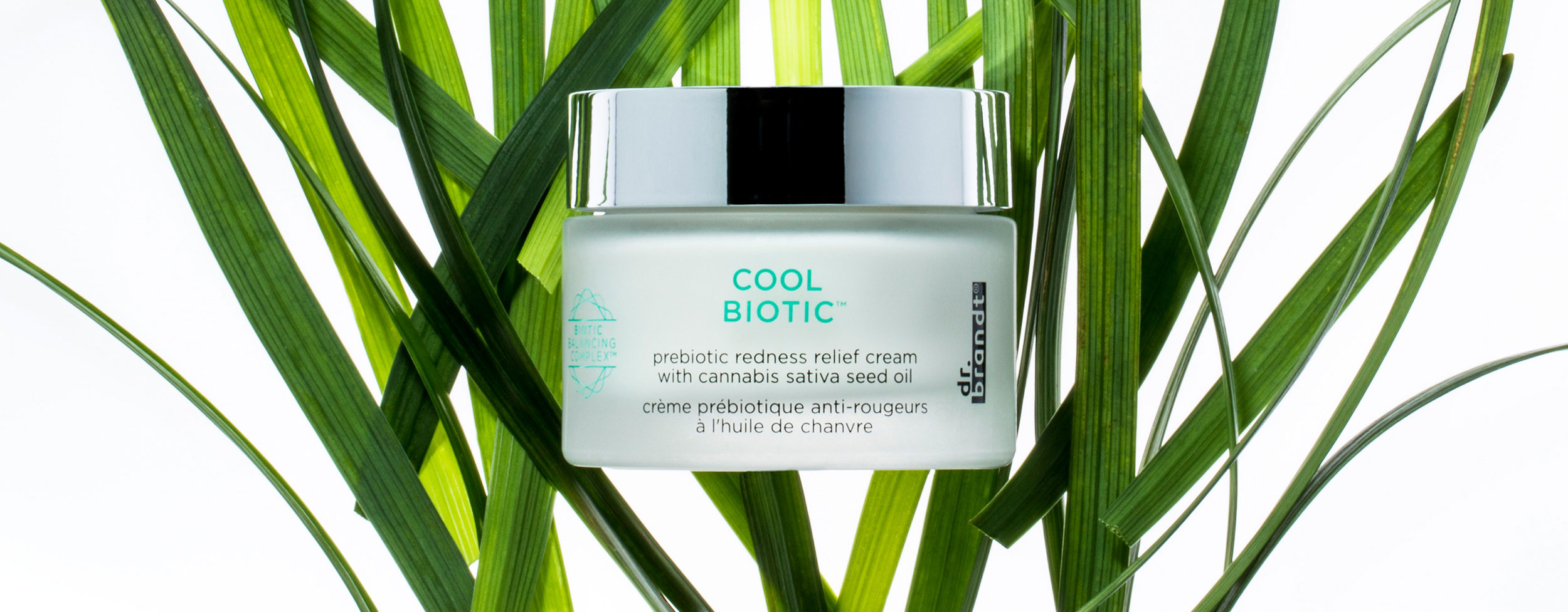 cool-biotic2-site